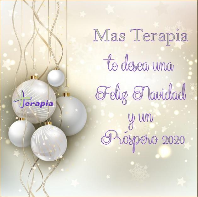 ¡¡¡Feliz Navidad y próspero Año 2020!!!