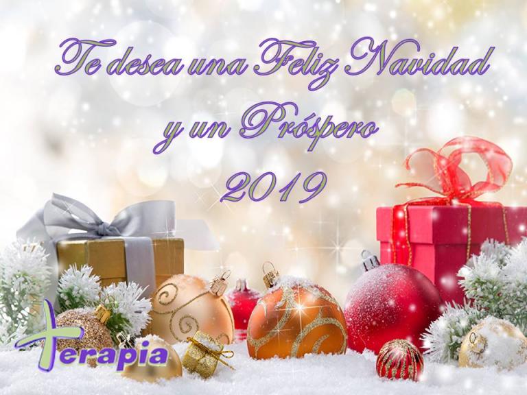 Feliz Navidad y Año Nuevo